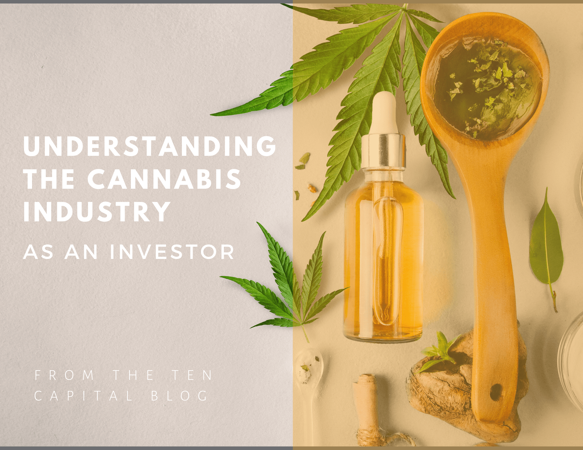 Investing in Cannabis, Cannabusiness